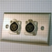 HAVE 1Gang Stainless Wallplate 2XLRF