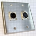HAVE 2Gang Stainless Wallplate 1XLRM/1F