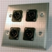 HAVE 2Gang Stainless Wallplate 4BG XLRM