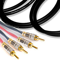 Canare 13GA Star Quad Speaker Cable Banana to Banana 75 FT