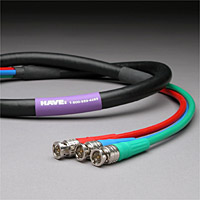 Canare RG6 3-Channel HD-SDI Video Snake Cable BNC-BNC 10 FT