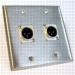 HAVE 2GANG STAINLESS WALLPLATE 2XLRM From HAVE Incorporated