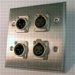 HAVE 2GANG STAINLESS WALLPLATE 2XLRM/2F From HAVE Incorporated